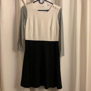 Ann Taylor Loft Long Sleeve Dress